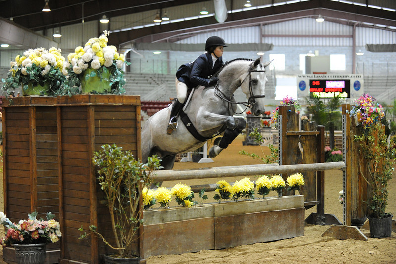 Horse show (16).jpg