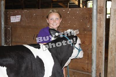 Stearns County Fair
