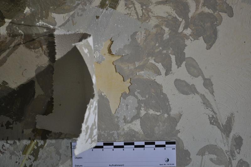 Während Entfernung Calicot und graue Übermalung: Ablösung von Malschicht vom vorgeleimten Gipsgrund DSC_0393
