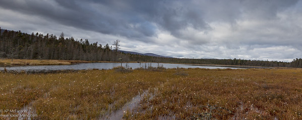 Moose Bog, Vermont