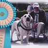 National Service Dog Award-Moval2