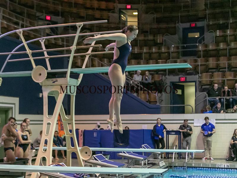 Swimming-diving vs Seton Hall_1280.jpg