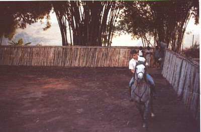 Jorge Mendonça Santos No Riley  Eu comecei a montar com cerca de 8 anos de idade e até parece que não me safava nada mal. Segundo os entendidos, leia-se professores, o Martinez e o Bonito, só seria bom cavaleiro quem caísse pelo menos sete vezes! Ora como eu já ia em cerca de 14 quedas, provavelmente era duas vezes bom cavaleiro! Mas a historinha não é esta.  Se bem se recordam havia uma série de indígenas que trabalhavam só nas cavalariças, na manutenção dos cavalos. O mais velho de todos, completamente careca, bem mais do que eu sou hoje, era o velho Samajanja de idade indefenível e feitio execrável quer connosco, quer com os próprios cavalos. O velho Samajanja creio que conheceu todos os cavalos desde o início, a começar por um que era zarolho, segundo conta o meu pai mas que eu me não lembro. Os mais antigos de que me lembro eram o Havano, um cavalo grande, já branco de ser velho de 18 anos, burro até dizer chega e que dava traques atrás de traques! Coitados daqueles que fossem atrás dele! O outro cavalo mais antigo era o Namorado, cavalo pequeno, muito nervoso e que só fazia alta escola por ter sido cavalo de toureio, normalmente montado pelo Branco, lembram-se dele sempre muito bem penteadinho com carradas de brilhantina?  Pois como ia dizendo, o velho Samajanja tratou de todos eles e dos seguintes, que mais tarde se quiserem também aqui recordarei, até mais ou menos finais dos anos sessenta, altura em que foi despedido. Só soube do seu despedimento já cá no puto e fiquei espantado. Ao fim de tantos anos, despedido? Soube então do resto da história pelo Bonito. O velhote, já estava farto de tratar de cavalos e como eles nunca mais acabavam, resolveu começar a envenená-los e os cavalos começaram a adoecer e alguns a morrer. Finalmente lá se descobriu o porquê e o Samajanja lá confessou a sua desdita porque, terá dito ele, nunca gostou de cavalos e já estava farto deles!