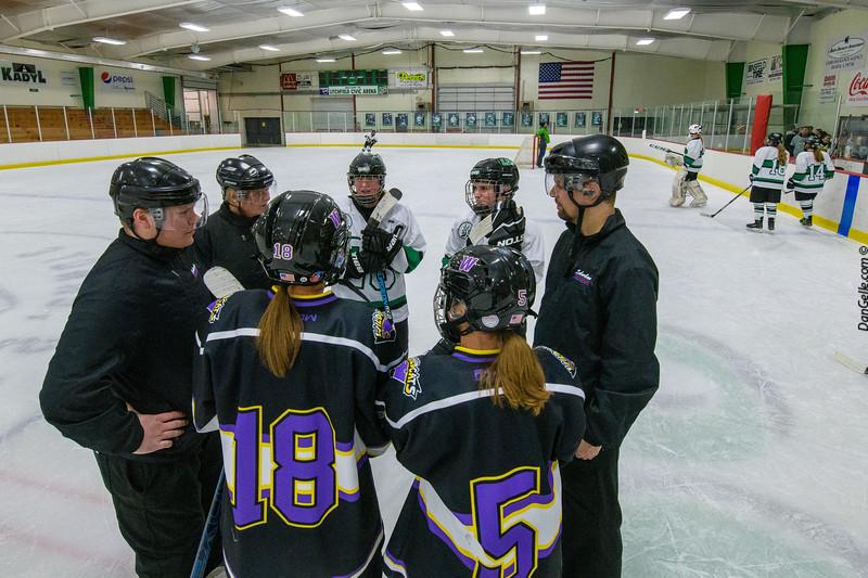 LDC Girls Hockey vs Waconia