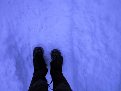 Seattle/Snow Shoeing