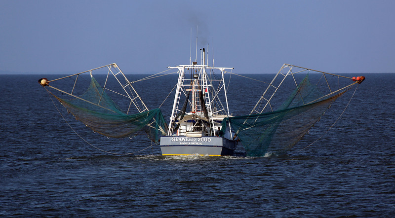 We catch up with the shrimp boat.