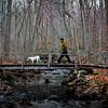 Man and a white dog on a bridge