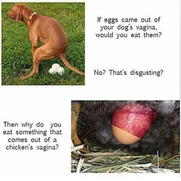 FreshGreenSmoothies_com-Vegans-Intelligent-Compassionate-raworganicvegan-3130.jpg