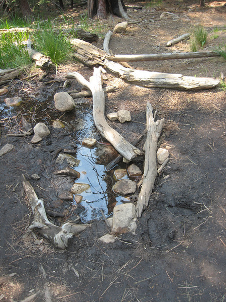 this is our last water source along the trail
