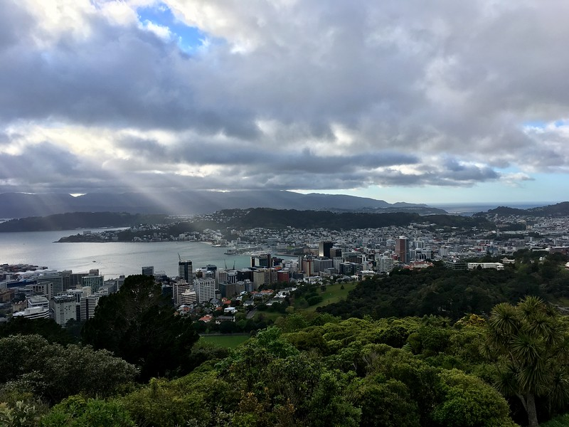 An entire Wellington CBD is in front of us