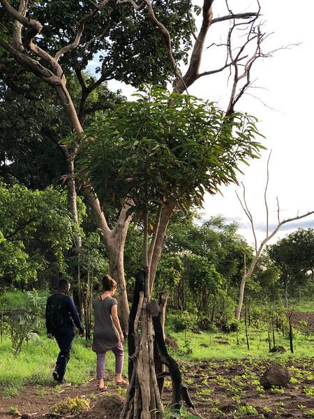 Guinea-114.jpg