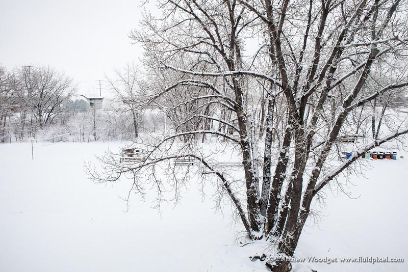 Woodget-140131-024--beer, Colorado, Fort Collins, New Belgium Brewing, snow, winter.jpg