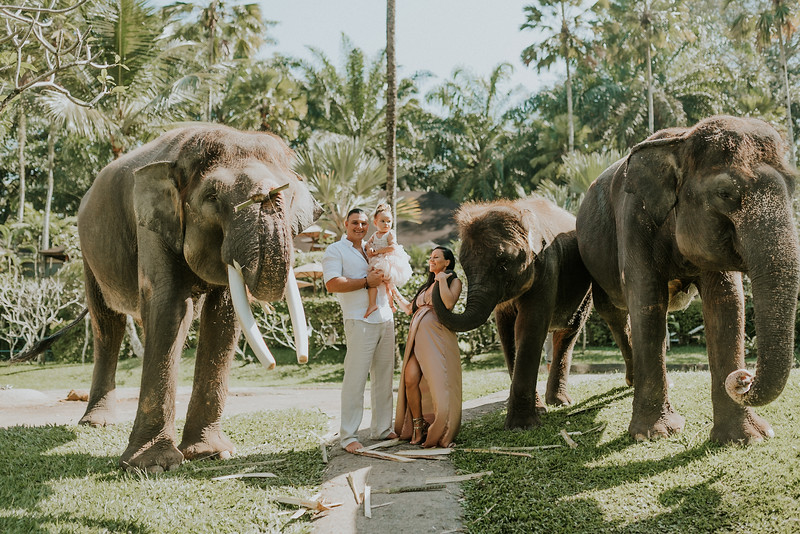 VTV_family_photoshoot_elephants_Bali_ (17).jpg