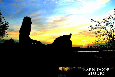 Barn Door Cover Photos