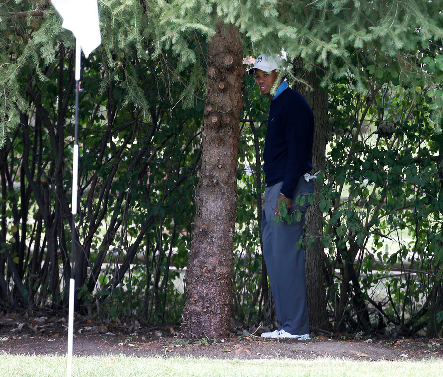 . Tiger Woods stands under a tree behind the first hole during the second round of the BMW Championship golf tournament at Conway Farms Golf Club in Lake Forest, Ill., Friday, Sept. 13, 2013. Woods double bogeyed the hole. (AP Photo/Charles Rex Arbogast)