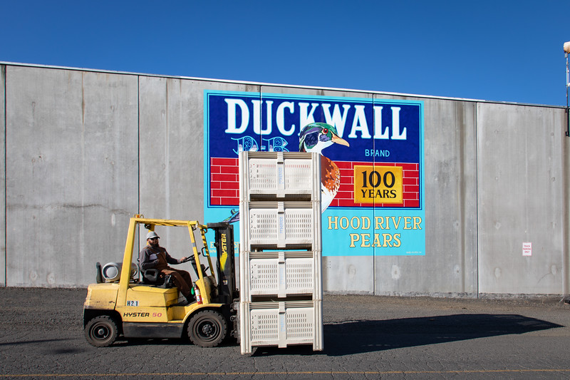 Duckwall20-1004.jpg