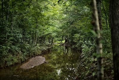 Banita Creek  (17)