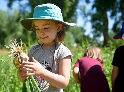 Photos: Farm Education in Boulder County