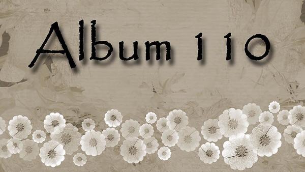 ALBUM 110 MAY 2017