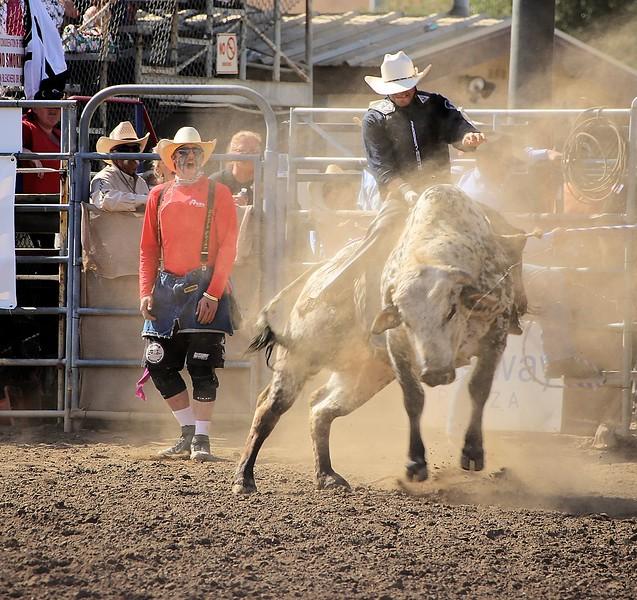 Lakeside Rodeo SUnday_4.19.2015_KC Bull.jpg