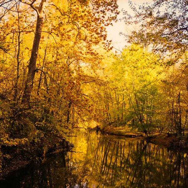 Autumn Hike 120 Film-00020.jpg