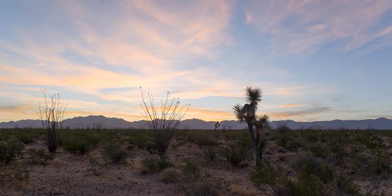 Western Arizona Sunrise