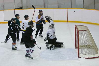 Hockey Experiments X 2008 November 27