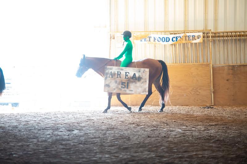 HorseCostume-26.jpg