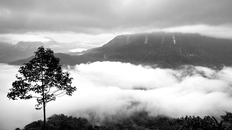 Meghalaya-Cherrapunji-dotted-with-waterfalls-11.jpg