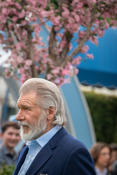 WESTWOOD, CALIFORNIA - JUNE 02: Harrison Ford attends the Premiere of Universal Pictures' 'The Secret Life Of Pets 2' at Regency Village Theatre on Sunday, June 02, 2019 in Westwood, California. (Photo by Tom Sorensen/Moovieboy Pictures)
