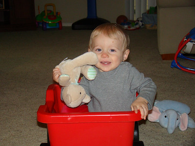 Cayden is 13 Months!
