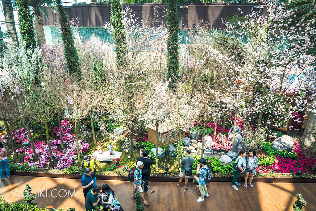 Gardens by the Bay - Sakura Matsuri 2018 floral display - flower field back overview 2