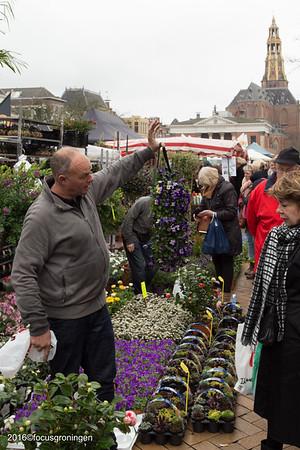 groningen 2016-centrum-bloemen- en plantenmarkt