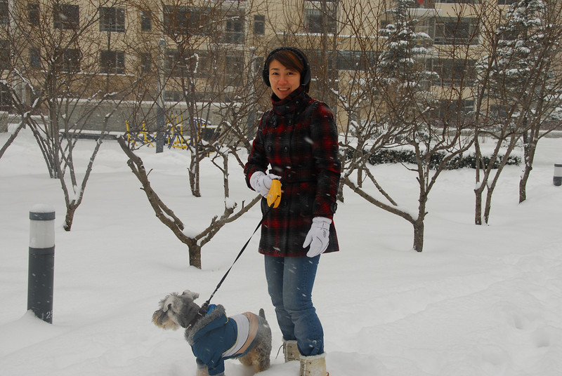 [20100103] 1st 2010 Snow in Beijing (26).JPG