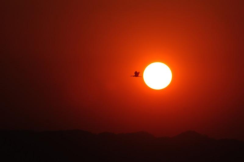 Sunset Point - Central Zone - Kaziranga