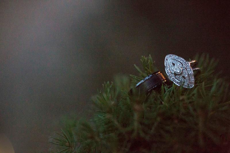 sacramento-wedding-rings.jpg