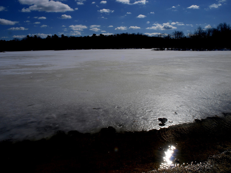 turkey swamp ice.jpg
