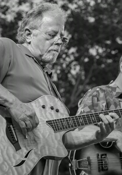 Gene LaFond-Salute to the Music of Bob Dylan 2014-Wolfe Park, St. Louis Park