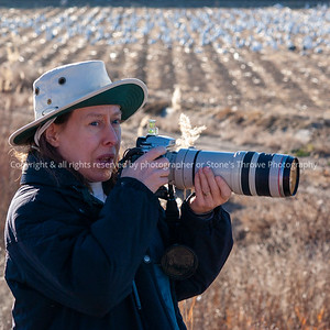 015-portrait-bosque_del_apache_nm-01dec06-09x09-006-350-3053