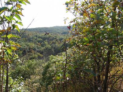 [Troop 98] Indian Cave Park, NE, October 2010