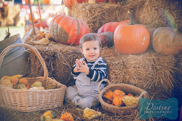 Carter's Pumpkin Patch Pix