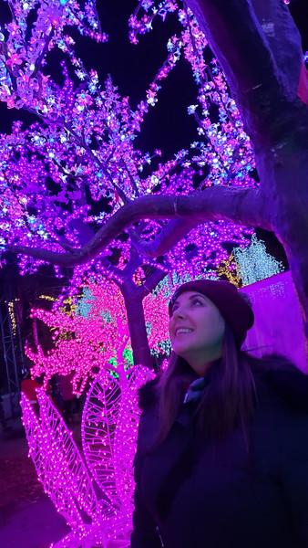 Toronto-Aurora-Winter-Festival-33.jpg
