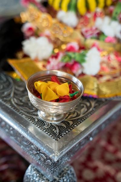 Erin_Harsha_Hindu_Wedding-28.jpg