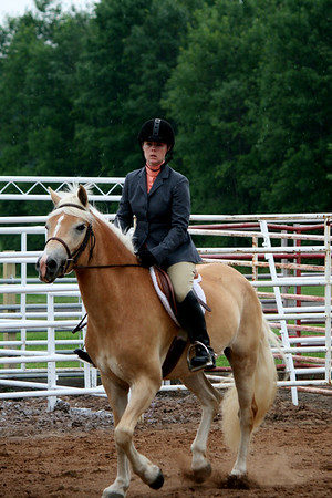 Class 12 English Adult Walk/Trot Equitation