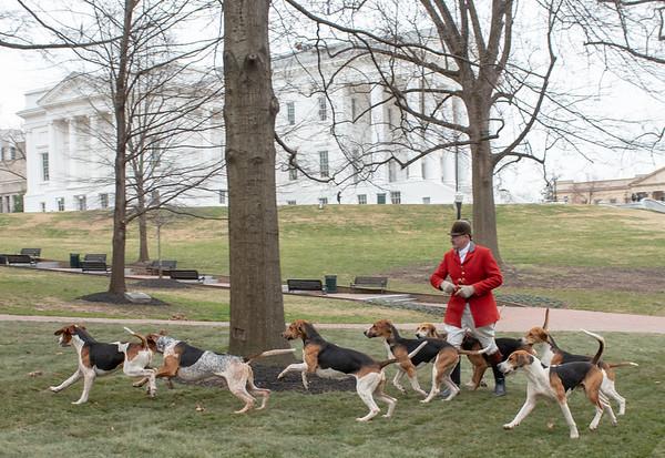 Deep Run Hunt at the Virginia State Capital 2-1-2019