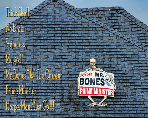 Mr.Bones All Dressed Up