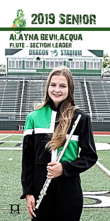Lake Orion Marching Band Banners 2019