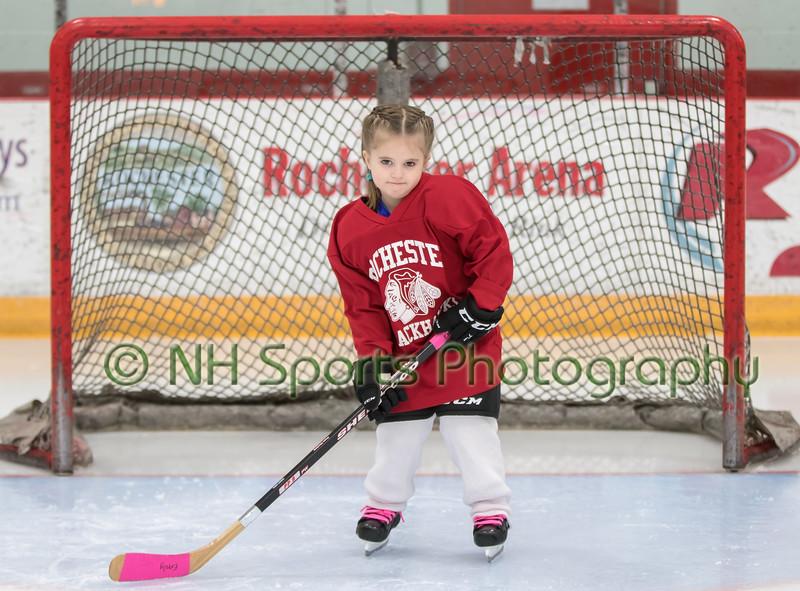 2017 Rochester Youth Hockey