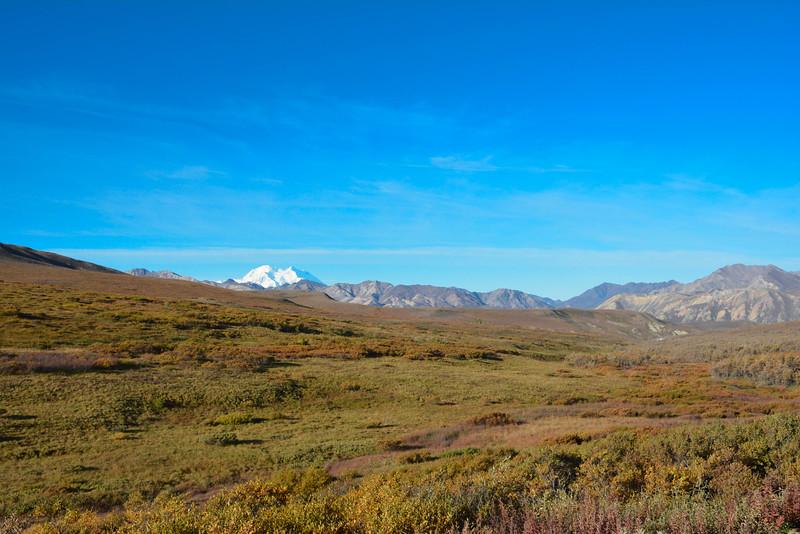 Denali-National-Park-75.jpg