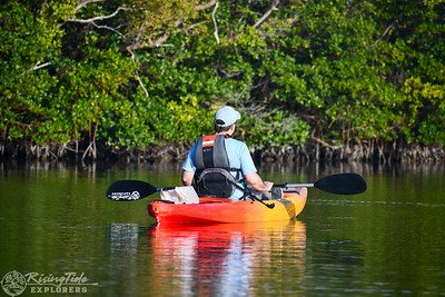 9AM Heart of Rookery Bay Kayak Tour - Milici & Ricart